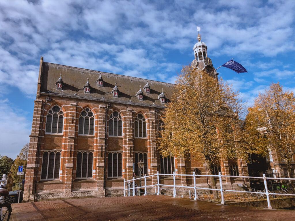 Rich results on Google's SERP when searching for 'Dutch Education System', 'เรียนรู้ระบบการศึกษาในประเทศเนเธอร์แลนด์', 'ระบบการศึกษาในประเทศเนเธอร์แลนด์', 'ระบบการศึกษาในเนเธอร์แลนด์', 'การศึกษาในประเทศเนเธอร์แลนด์', 'การศึกษาเนเธอร์แลนด์', 'ประเทศเนเธอร์แลนด์', 'เนเธอร์แลนด์', 'Education system in the Netherlands', 'Education in the Netherlands' and 'The Dutch school system', 'มหาวิทยาลัยในประเทศเนเธอร์แลนด์', and 'มหาวิทยาลัยในเนเธอร์แลนด์'