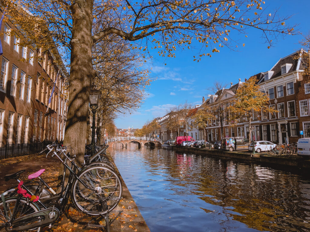 Rich results on Google's SERP when searching for 'คริสต์มาสในเนเธอร์แลนด์', 'ฉลองคริสต์มาสในเนเธอร์แลนด์', 'Celebrating Christmas in the Netherlands', 'การใช้ชีวิตในประเทศเนเธอร์แลนด์', 'เนเธอร์แลนด์ วัฒนธรรม', 'การเฉลิมฉลองคริสต์มาส', 'เทศกาลคริสต์มาส', 'คริสต์มาส เนเธอร์แลนด์', 'ประเทศเนเธอร์แลนด์', 'Living in the Netherlands', 'วัฒนธรรมของชาวดัตช์' and 'ฉลองคริสต์มาส เนเธอร์แลนด์'